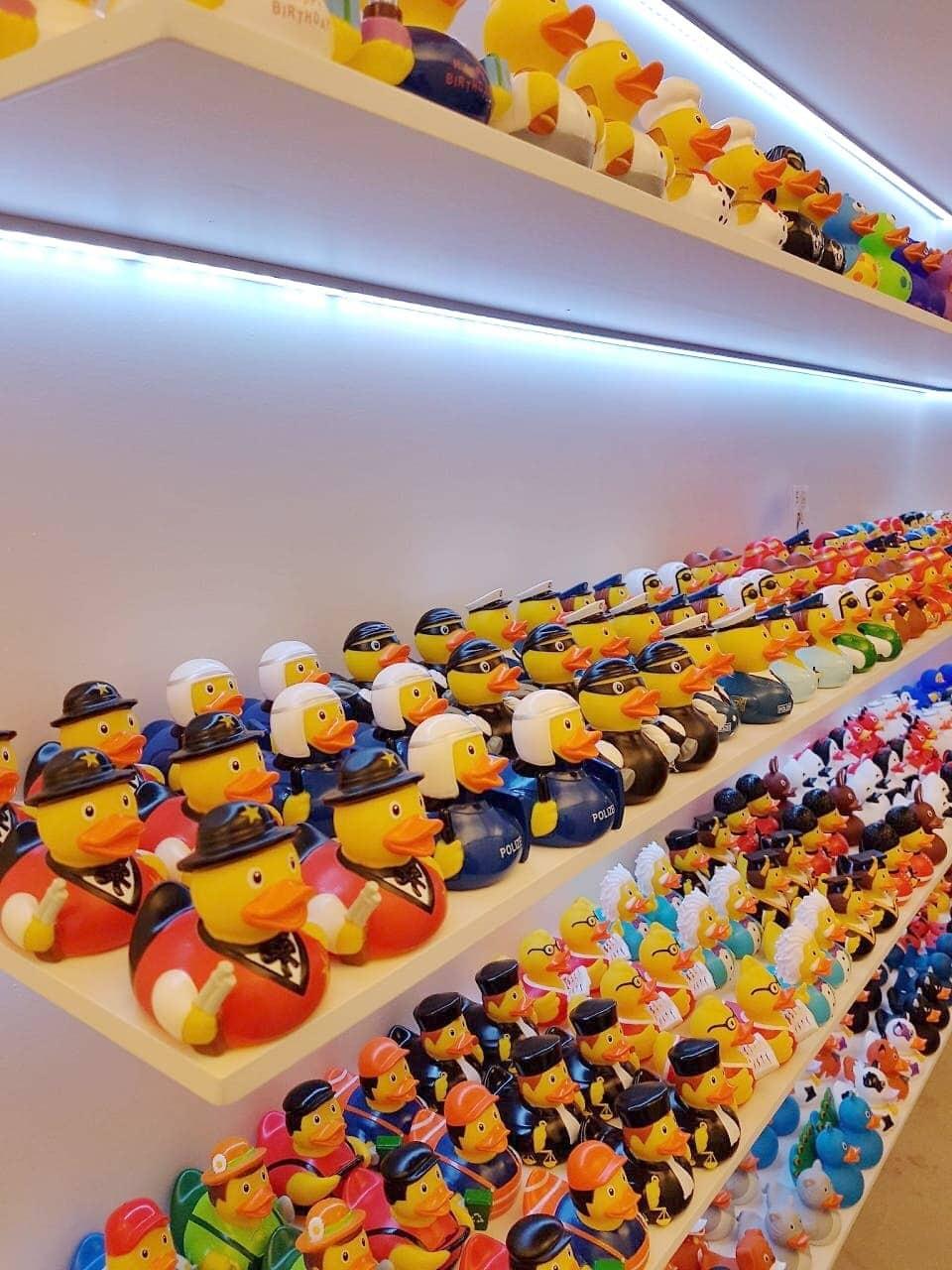 Barcelona Duck Store foto