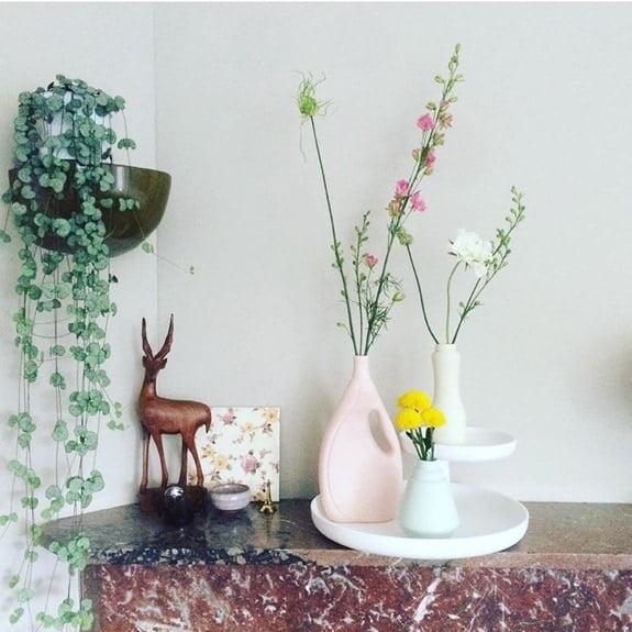 bloemen instagram